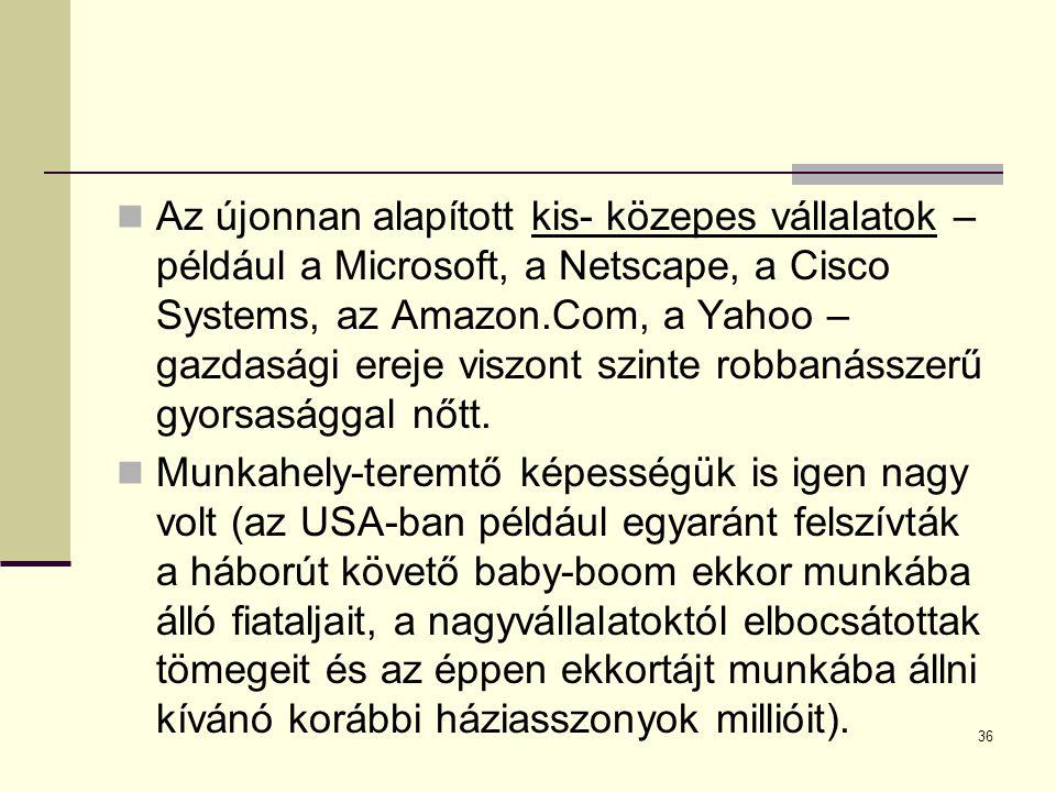 Az újonnan alapított kis- közepes vállalatok – például a Microsoft, a Netscape, a Cisco Systems, az Amazon.Com, a Yahoo – gazdasági ereje viszont szin