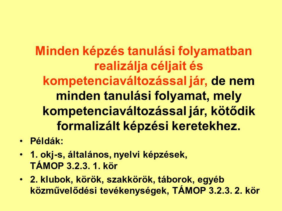 Hálózati jellemzők Szakmai szervezetek: Magyar Népművelők Egyesülete, KKOSZ, MIOSZ, TEMI Szakmai alkalomszerű együttműködés – rendezvények, versenyek Fejlesztő szakmai műhelyek: TÁMOP, minőségfejlesztés Minden településen működik közművelődési intézmény.