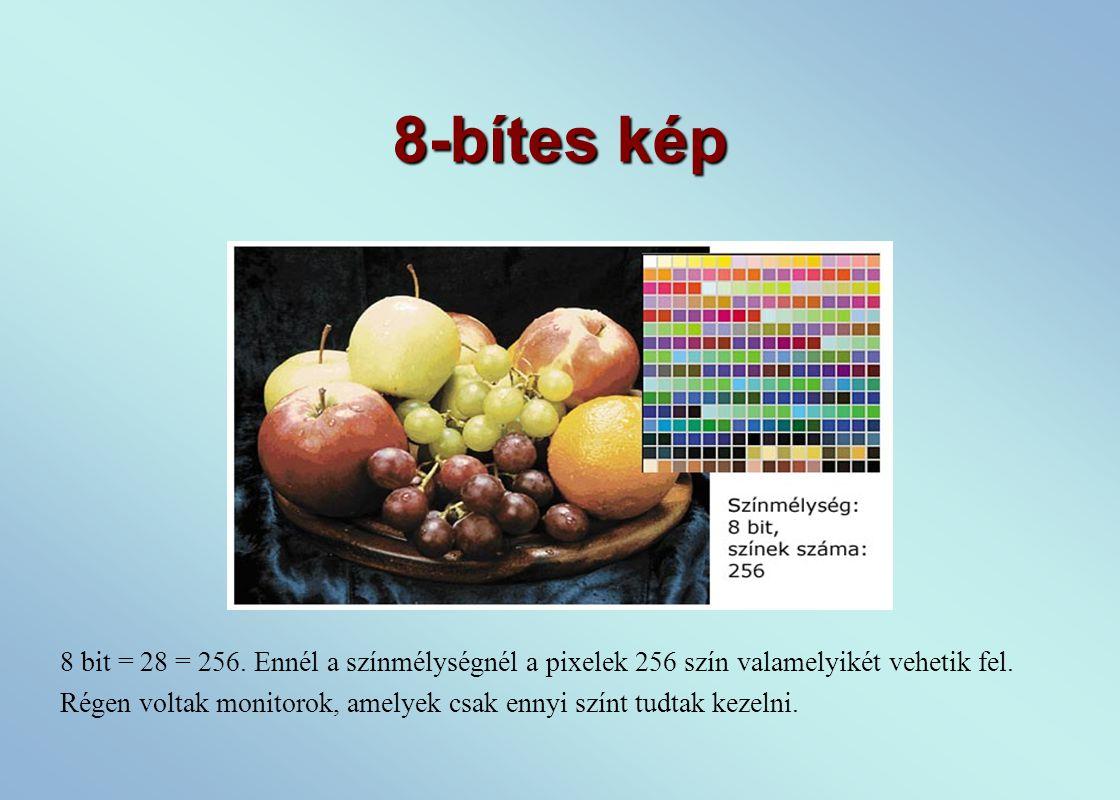 8-bítes kép 8 bit = 28 = 256.Ennél a színmélységnél a pixelek 256 szín valamelyikét vehetik fel.