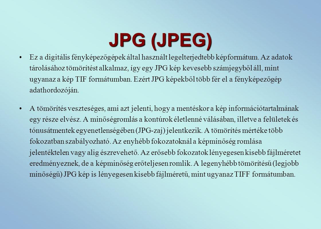 JPG (JPEG) Ez a digitális fényképezőgépek által használt legelterjedtebb képformátum.