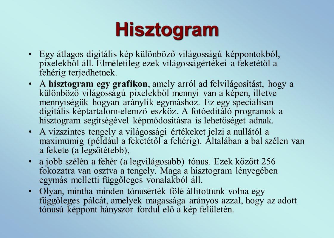 Hisztogram Egy átlagos digitális kép különböző világosságú képpontokból, pixelekből áll.