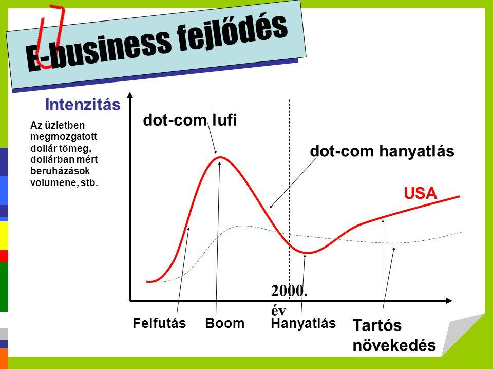 E-business fejlődés Intenzitás Az üzletben megmozgatott dollár tömeg, dollárban mért beruházások volumene, stb. 2000. év FelfutásBoomHanyatlás Tartós
