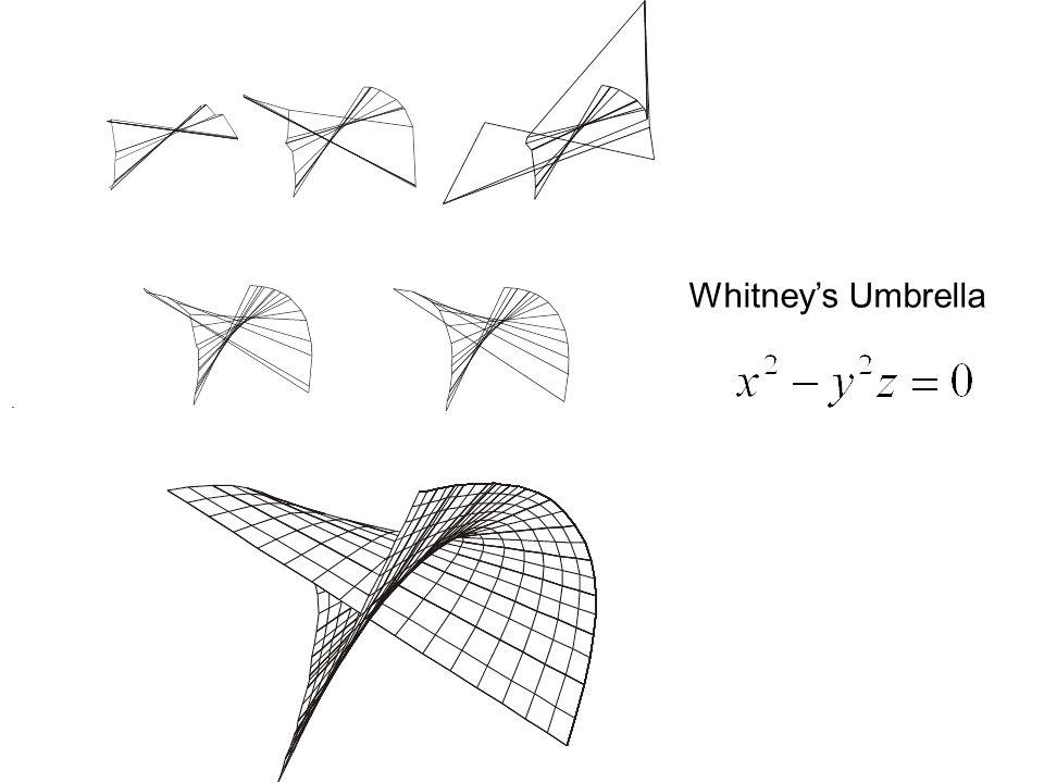 . Whitney's Umbrella