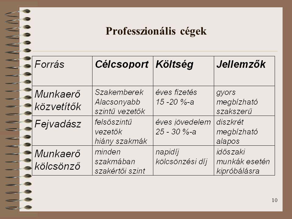 10 Professzionális cégek