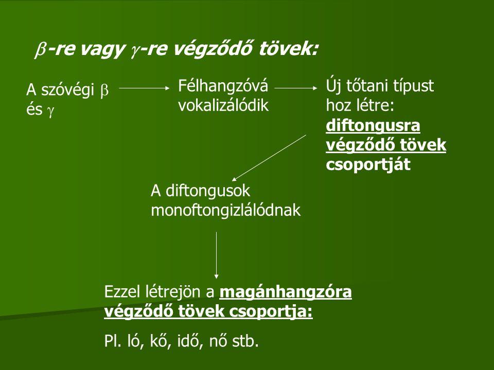  -re vagy  -re végződő tövek: A szóvégi  és  Félhangzóvá vokalizálódik Új tőtani típust hoz létre: diftongusra végződő tövek csoportját A diftongu