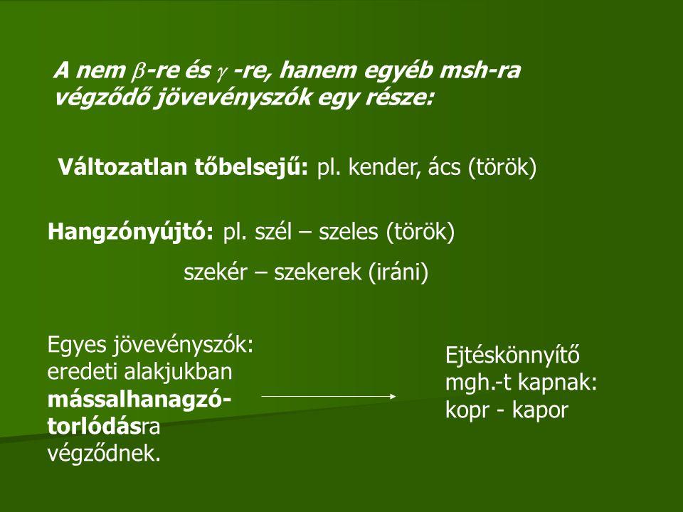 A nem  -re és  -re, hanem egyéb msh-ra végződő jövevényszók egy része: Változatlan tőbelsejű: pl. kender, ács (török) Hangzónyújtó: pl. szél – szele