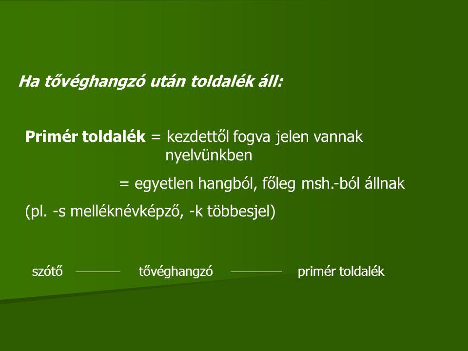 Ha tővéghangzó után toldalék áll: Primér toldalék = kezdettől fogva jelen vannak nyelvünkben = egyetlen hangból, főleg msh.-ból állnak (pl. -s mellékn