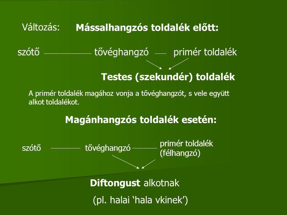 ÓMAGYAR KORI VÁLTOZÁSOK Három hosszú magánhangzó: - Í > i Már az ősmagyar korban megrövidült a szó végén.