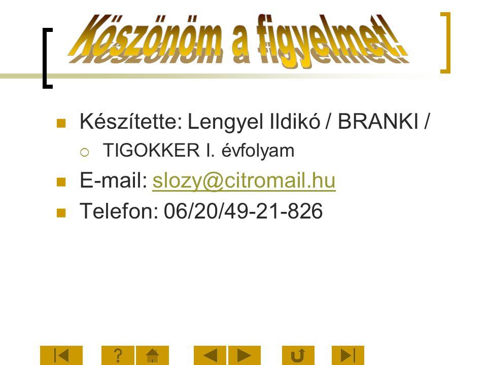 Készítette: Lengyel Ildikó / BRANKI /  TIGOKKER I. évfolyam E-mail: slozy@citromail.huslozy@citromail.hu Telefon: 06/20/49-21-826