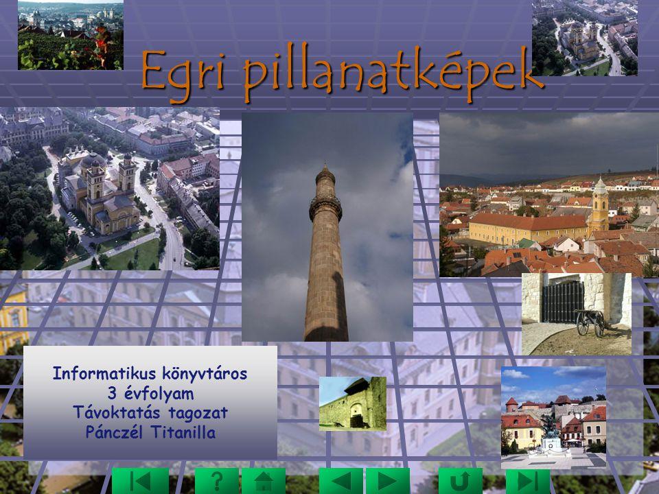 Egri pillanatképek Informatikus könyvtáros 3 évfolyam Távoktatás tagozat Pánczél Titanilla