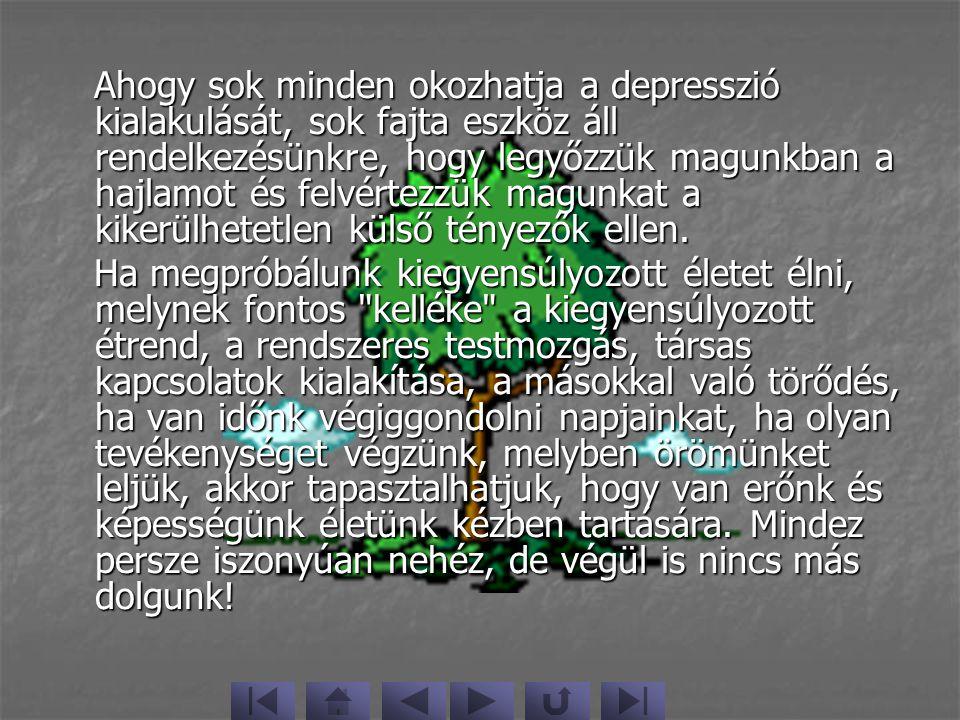 Multimédia Slide-show2003.május Készítette:Gál vanda II.évfolyamSzociálpedagógia