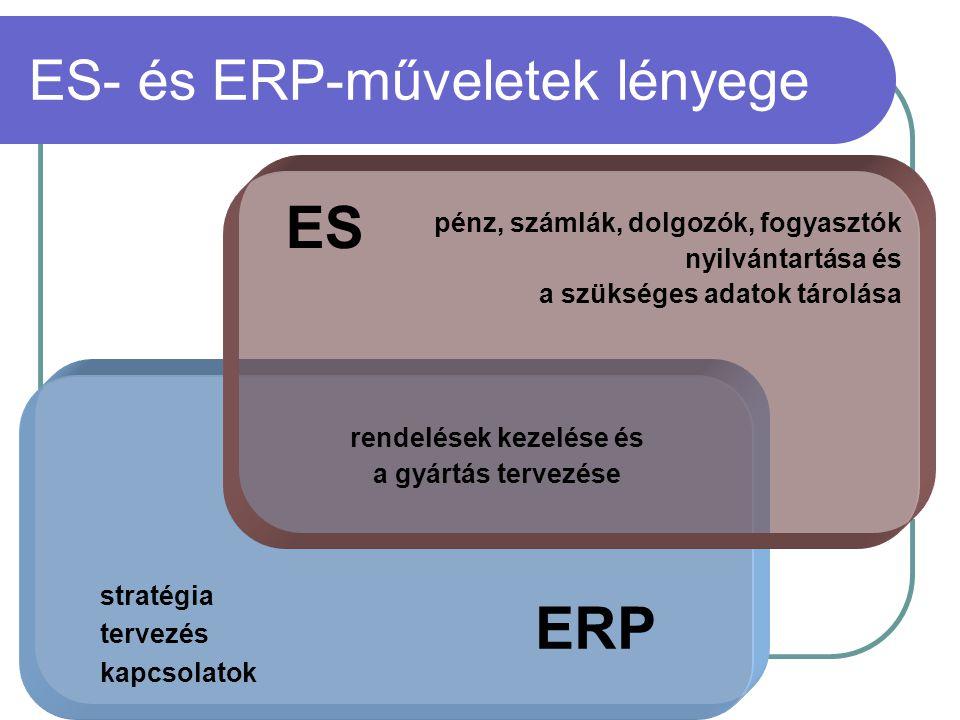 ES- és ERP-műveletek lényege stratégia tervezés kapcsolatok rendelések kezelése és a gyártás tervezése pénz, számlák, dolgozók, fogyasztók nyilvántart