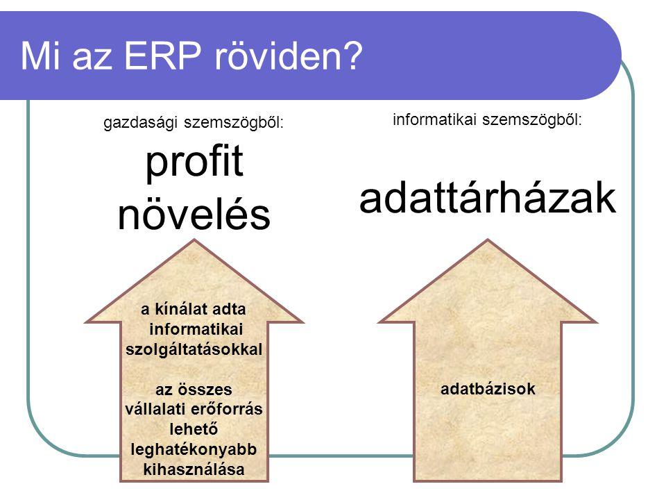 Mi az ERP röviden? a kínálat adta informatikai szolgáltatásokkal az összes vállalati erőforrás lehető leghatékonyabb kihasználása profit növelés adatb