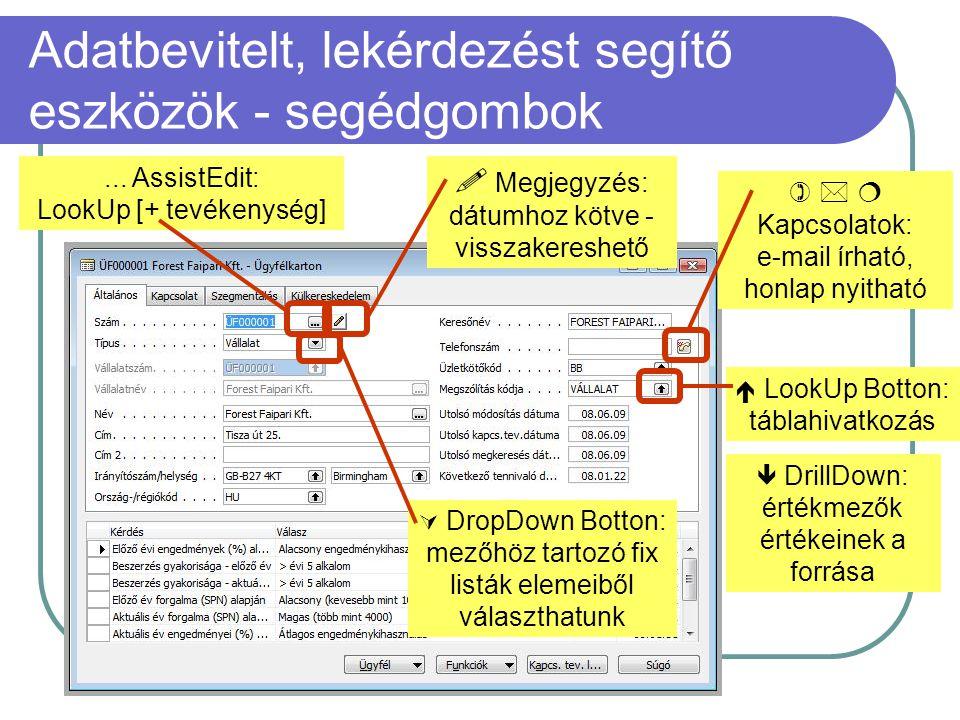 Adatbevitelt, lekérdezést segítő eszközök - segédgombok  LookUp Botton: táblahivatkozás  DrillDown: értékmezők értékeinek a forrása  DropDown Botto