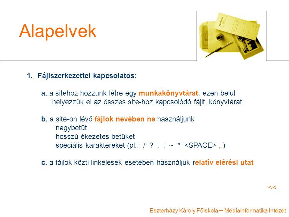 Eszterházy Károly Főiskola ─ Médiainformatika Intézet Alapelvek 1.Fájlszerkezettel kapcsolatos: a. a sitehoz hozzunk létre egy munkakönyvtárat, ezen b