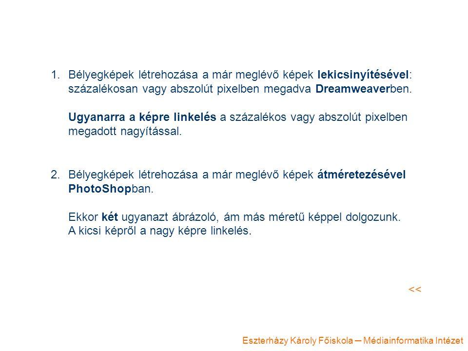 Eszterházy Károly Főiskola ─ Médiainformatika Intézet 1.Bélyegképek létrehozása a már meglévő képek lekicsinyítésével: százalékosan vagy abszolút pixe