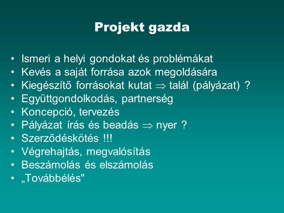 Projekt gazda Ismeri a helyi gondokat és problémákat Kevés a saját forrása azok megoldására Kiegészítő forrásokat kutat  talál (pályázat) ? Együttgon