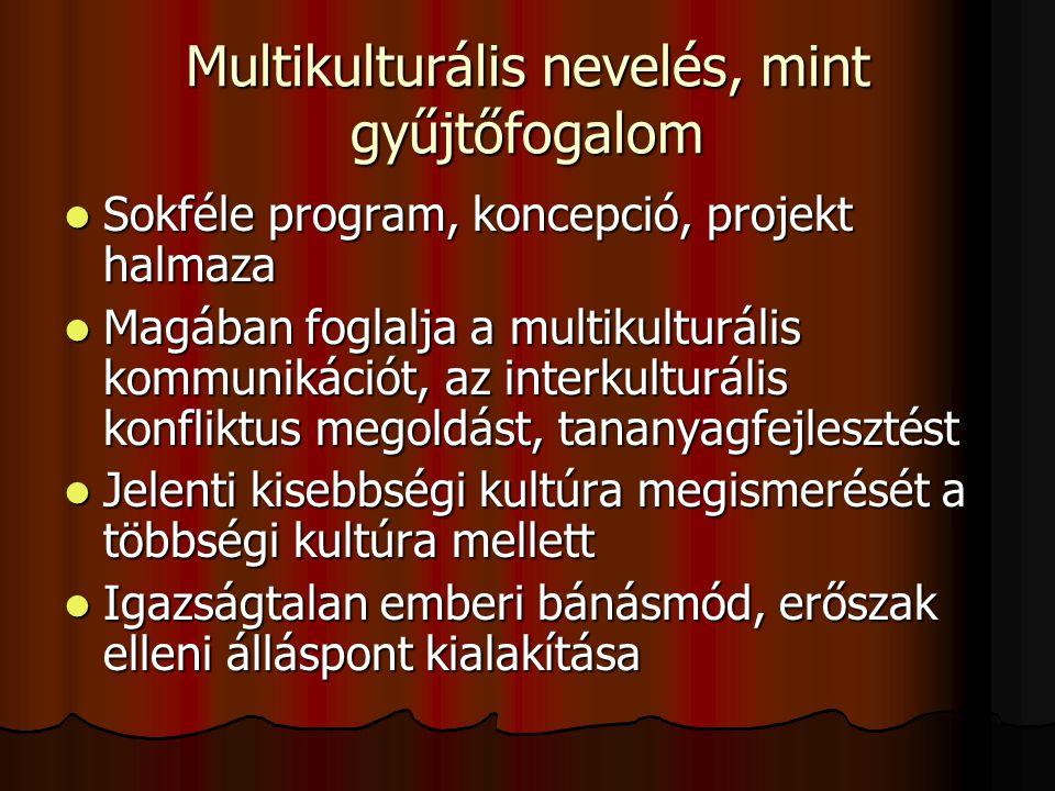 Multikulturális nevelés, mint gyűjtőfogalom Sokféle program, koncepció, projekt halmaza Sokféle program, koncepció, projekt halmaza Magában foglalja a multikulturális kommunikációt, az interkulturális konfliktus megoldást, tananyagfejlesztést Magában foglalja a multikulturális kommunikációt, az interkulturális konfliktus megoldást, tananyagfejlesztést Jelenti kisebbségi kultúra megismerését a többségi kultúra mellett Jelenti kisebbségi kultúra megismerését a többségi kultúra mellett Igazságtalan emberi bánásmód, erőszak elleni álláspont kialakítása Igazságtalan emberi bánásmód, erőszak elleni álláspont kialakítása