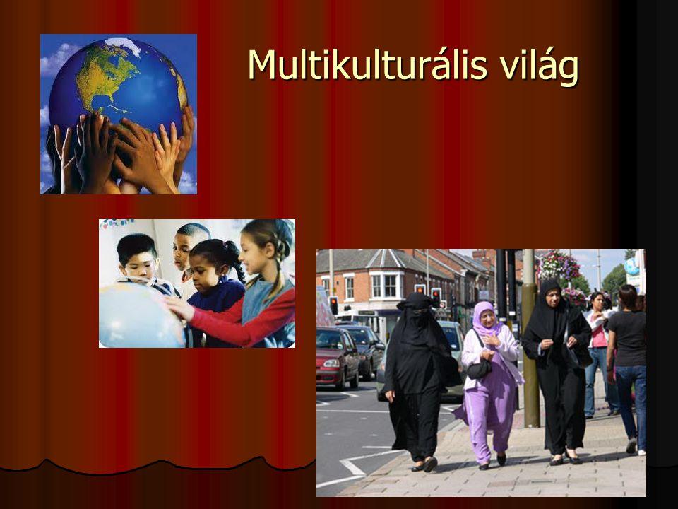 Multikulturális világ Multikulturális világ