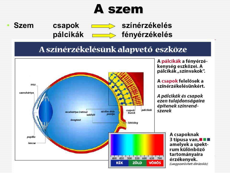 Mi a fény? A Napból érkező elektromágneses sugárzás adott hullámhossz tartománya. A látható elektromágneses sugárzás spektruma 380-780 nanométer.