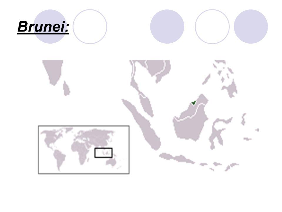 Az egyes országok jelentős nyersanyagforrásokkal rendelkeznek, ezek közül is kiemelkedik Brunei kőolaj-és földgázkincse, valamint Malajzia ónkészlete.