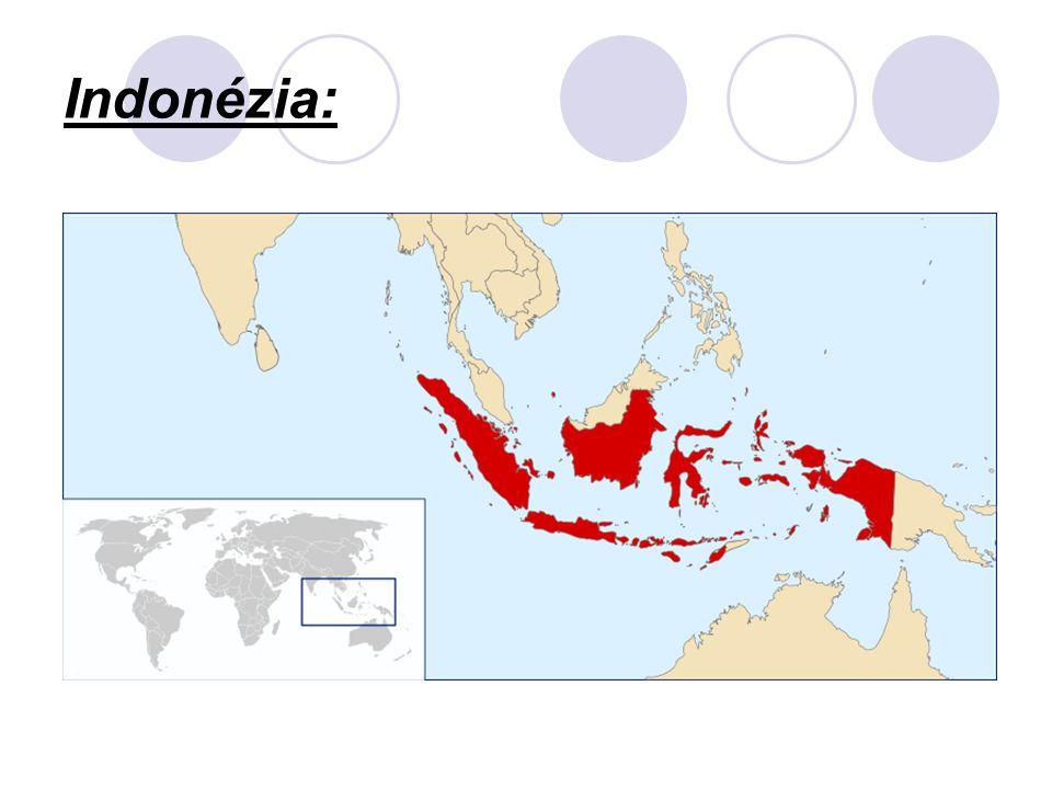 Politikai rendszereik is különbözőek: Szovjet típusú egypártrendszer képviselői Vietnam és Laosz Többpártrendszer van Thaiföldön, valamint Bruneiben Iszlám eszmék dominálnak Indonéziában és Malajziában