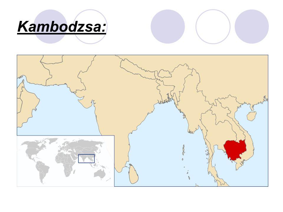 A távol-keleti országokat gyarmatosították a 19.- 20- században.