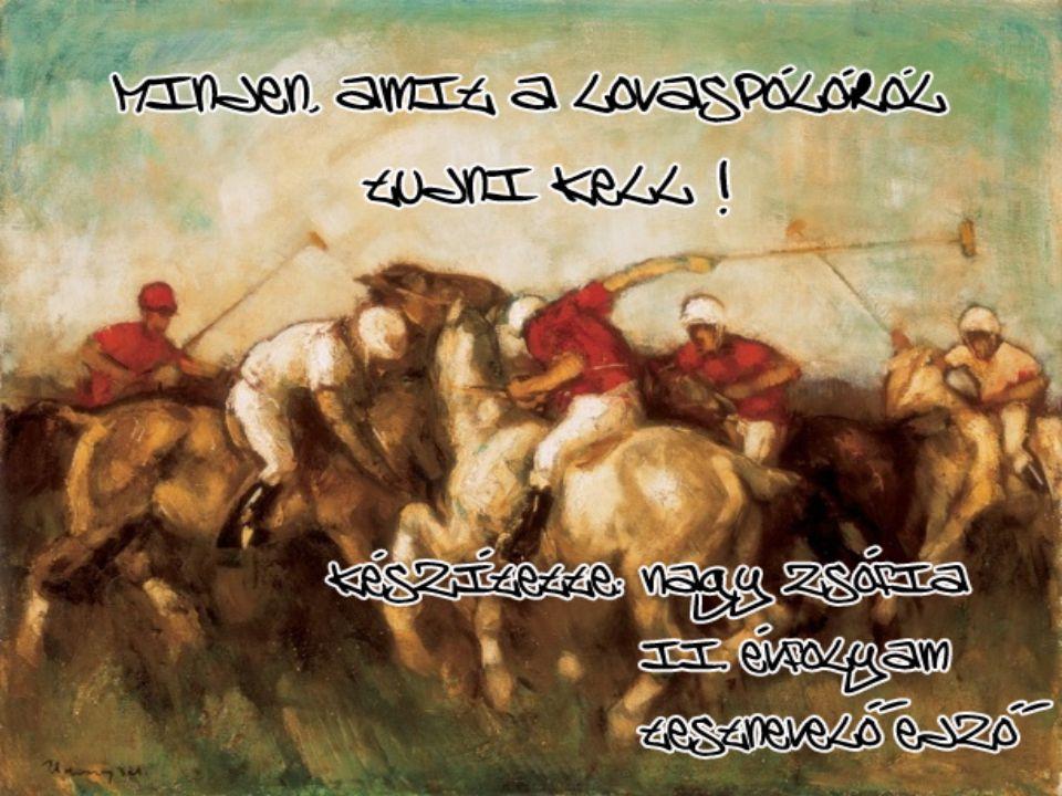 A póló feltehetően közép-Ázsia sztyeppés pusztáin lakó népek lovasjátékából fejlődött ki.