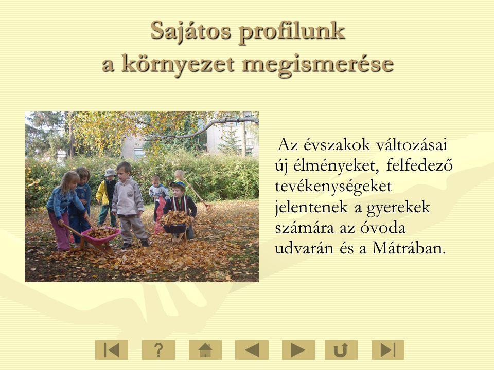 Sajátos profilunk a környezet megismerése Az évszakok változásai új élményeket, felfedező tevékenységeket jelentenek a gyerekek számára az óvoda udvar