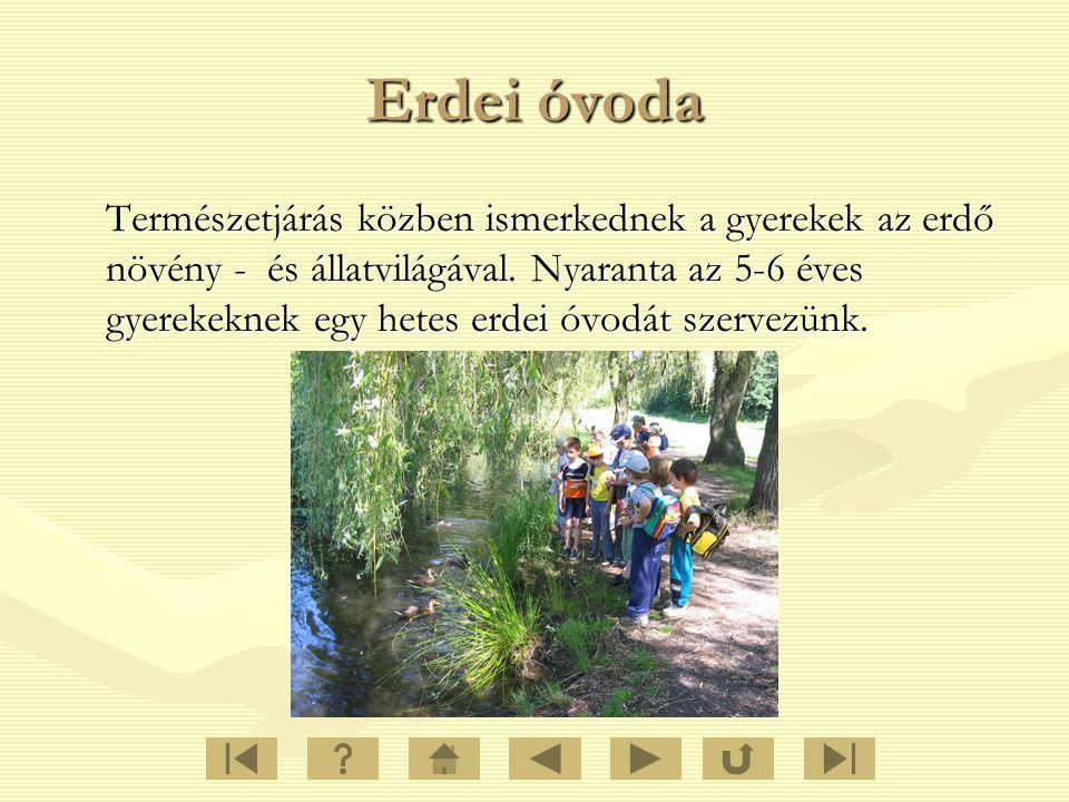 Erdei óvoda Természetjárás közben ismerkednek a gyerekek az erdő növény - és állatvilágával. Nyaranta az 5-6 éves gyerekeknek egy hetes erdei óvodát s