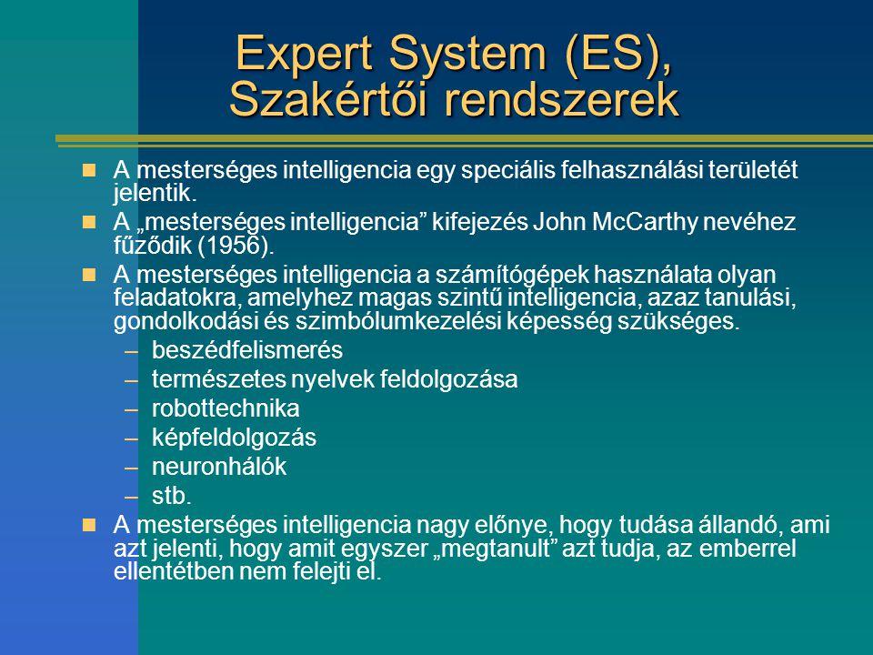 """Expert System (ES), Szakértői rendszerek A mesterséges intelligencia egy speciális felhasználási területét jelentik. A """"mesterséges intelligencia"""" kif"""