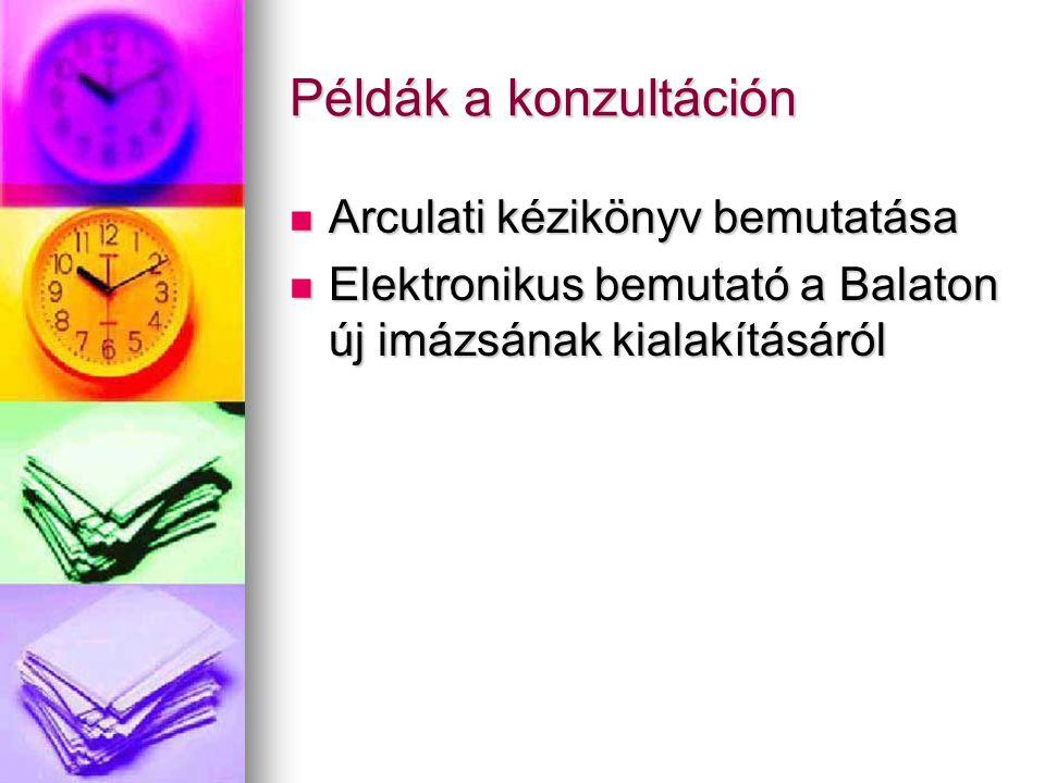 Példák a konzultáción Arculati kézikönyv bemutatása Arculati kézikönyv bemutatása Elektronikus bemutató a Balaton új imázsának kialakításáról Elektron
