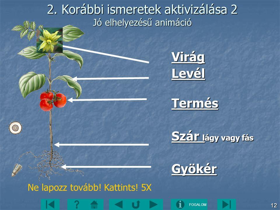 FOGALOM 12 2. Korábbi ismeretek aktivizálása 2 Jó elhelyezésű animáció VirágLevélTermés Szár lágy vagy fás Gyökér Ne lapozz tovább! Kattints! 5X
