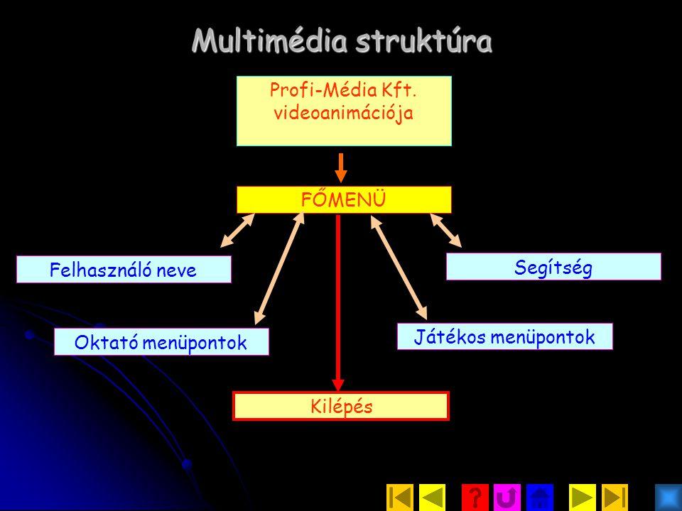 Multimédia struktúra Profi-Média Kft.