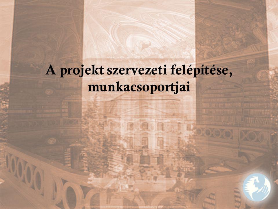 A projekt szervezeti felépítése, munkacsoportjai