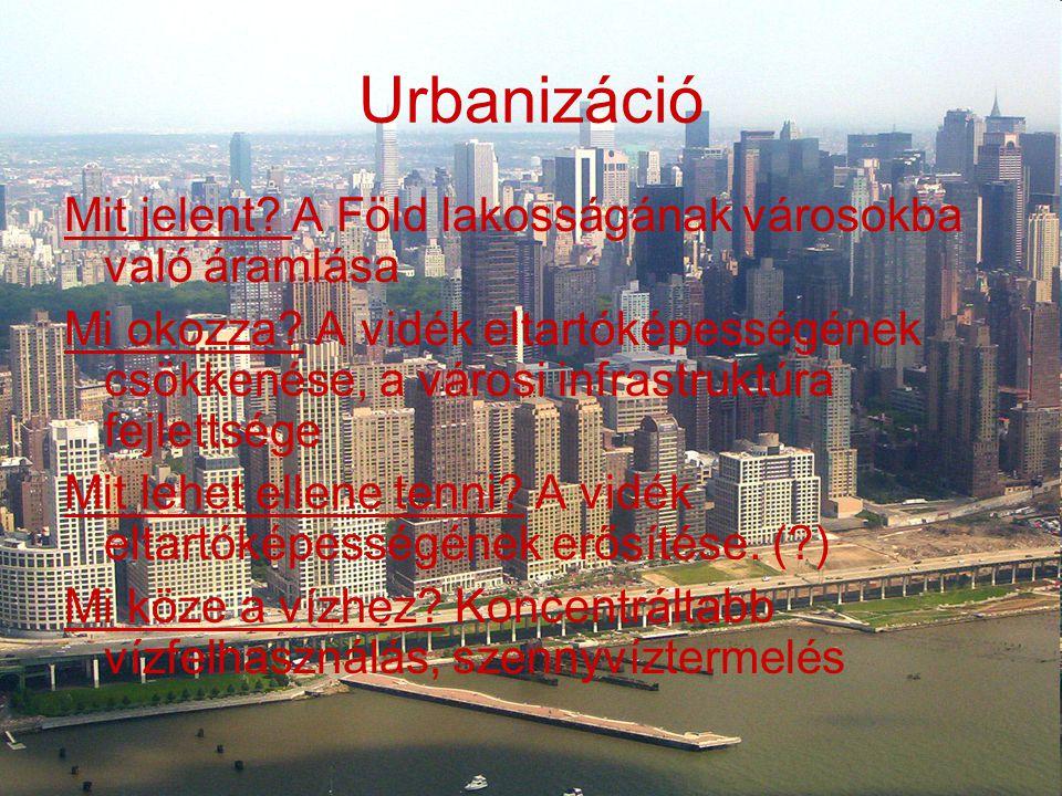 Urbanizáció Mit jelent? A Föld lakosságának városokba való áramlása Mi okozza? A vidék eltartóképességének csökkenése, a városi infrastruktúra fejlett