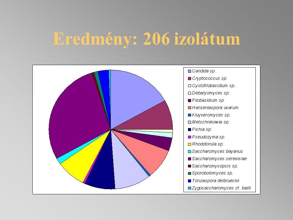 Az élesztők eredete SZŐLŐMUST ACÉL ERJESZTŐ TARTÁLY NYÍLÁSA ÁSZOKFA4 NAPOS MUST KIERJEDT MUST Metschnikowia sp.