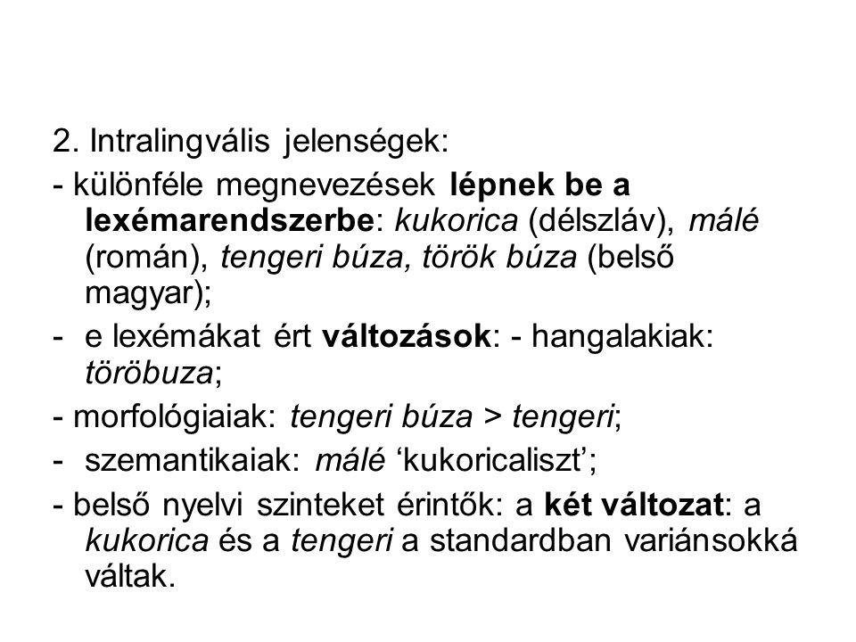 1. A nyelvi történések extralingvális előzményei: -Amerika felfedezése; -a növényt Európába hozzák, elterjed; -termeszteni kezdik a magyar nyelvterüle