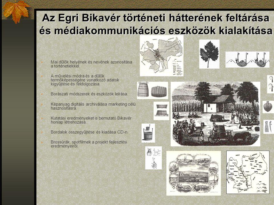 Az Egri Bikavér történeti hátterének feltárása és médiakommunikációs eszközök kialakítása  Mai dűlők helyének és nevének azonosítása a történetiekkel.