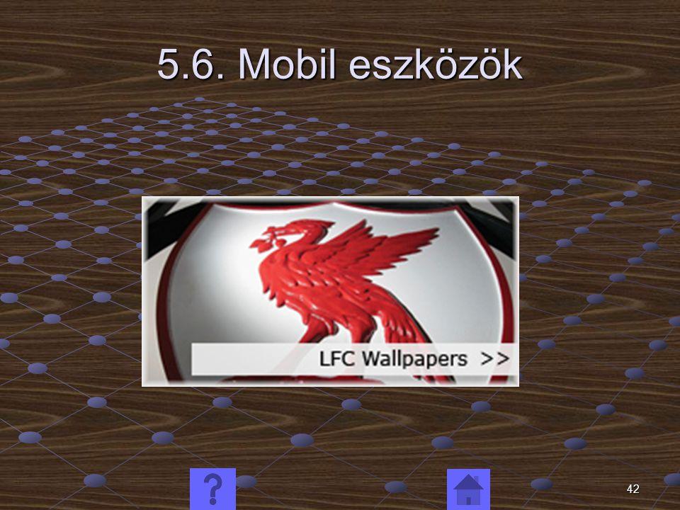 42 5.6. Mobil eszközök
