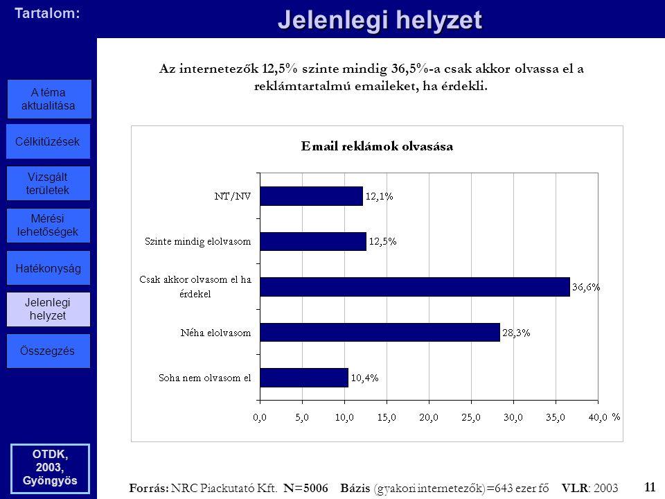 Összegzés Jelenlegi helyzet Hatékonyság Mérési lehetőségek Vizsgált területek Célkitűzések A téma aktualitása Tartalom: Jelenlegi helyzet OTDK, 2003, Gyöngyös Az internetezők 12,5% szinte mindig 36,5%-a csak akkor olvassa el a reklámtartalmú emaileket, ha érdekli.