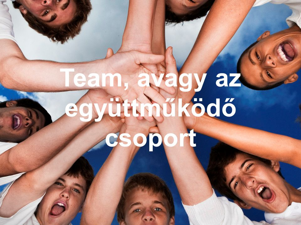 1 Team, avagy az együttműködő csoport