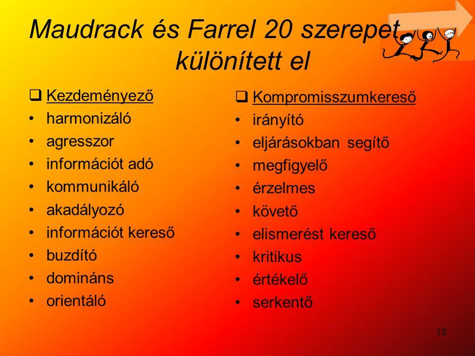 13 Maudrack és Farrel 20 szerepet különített el  Kezdeményező harmonizáló agresszor információt adó kommunikáló akadályozó információt kereső buzdító