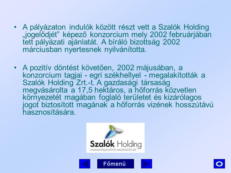 """A pályázaton indulók között részt vett a Szalók Holding """"jogelődjét"""" képező konzorcium mely 2002 februárjában tett pályázati ajánlatát. A bíráló bizot"""