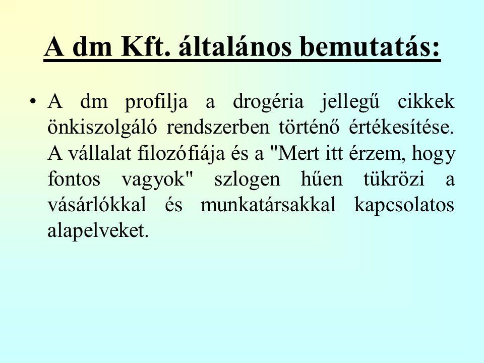 Szervezeti felépítés: A Dm Kft.