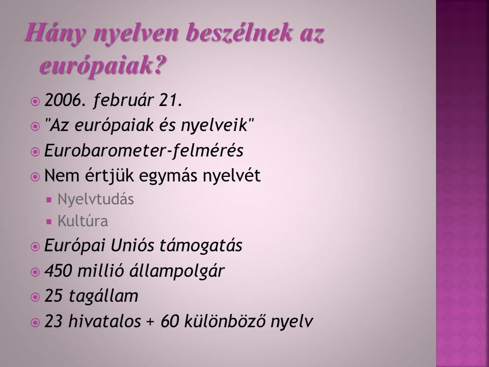  Államnyelv  Hivatalos nyelv  Regionális/kisebbségi nyelv  Egy régióban beszélt nyelv  Másik tagállamban hivatalos nyelv  Nem területhez kötött nyelv  Nem őshonos nyelv  Hivatalos EU-nyelv Nyelvi kategóriák