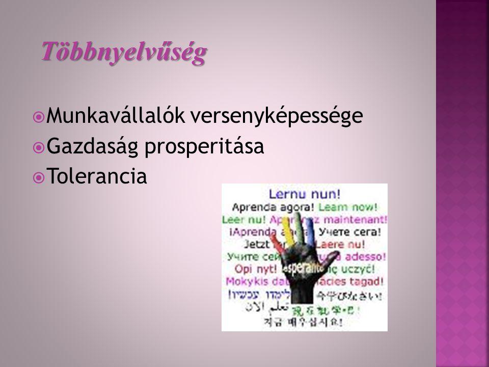  2000.alapjogi Charta 22.cikk  2001. A nyelvek európai éve  2002.