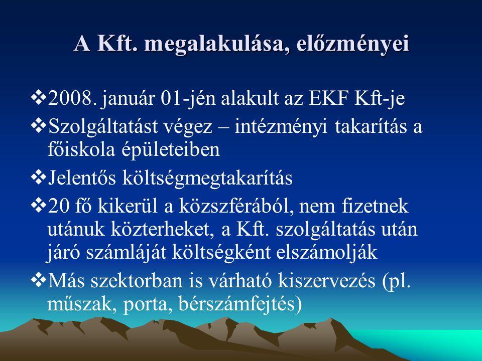 A Kft. megalakulása, előzményei  2008.