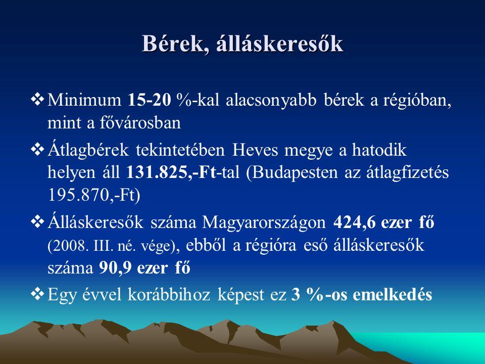 Álláskeresők  Pályakezdő álláskeresők száma Magyarországon 42,9 ezer fő (2008.