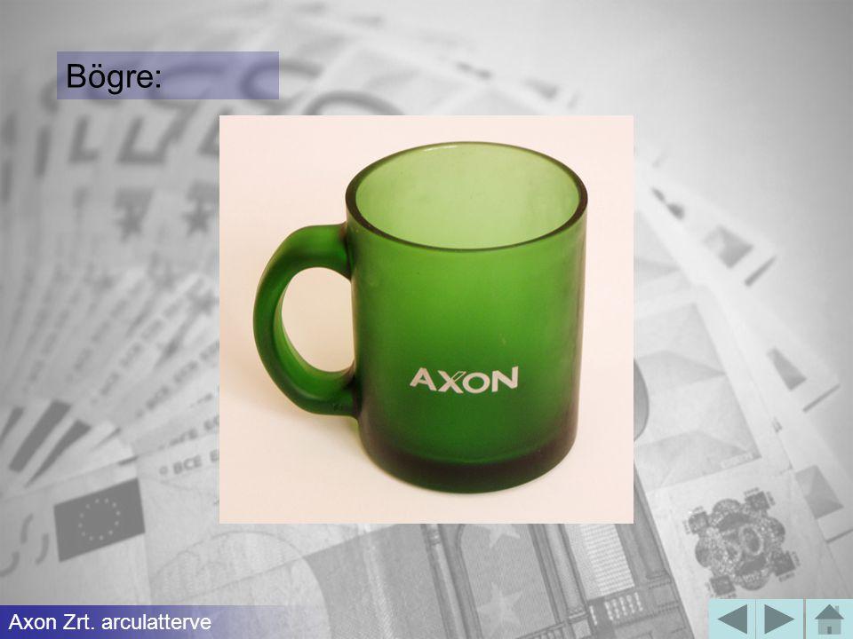Bögre: Axon Zrt. arculatterve
